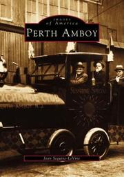 Cover of: Perth Amboy | Joan Seguine-LeVine