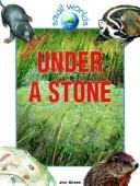 Cover of: Under a Stone (Small Worlds)