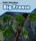 Cover of: Big Freeze