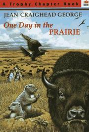 Cover of: One Day in the Prairie (Trophy Chapter Book)