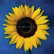 Cover of: Sunflowers | Running Press