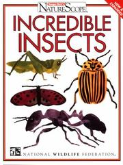 Cover of: Incredible insects |