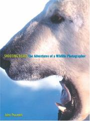 Cover of: Shooting Bears