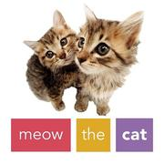 Cover of: Meow the Cat | Artlist Collection