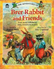 Cover of: The adventures of Brer Rabbit and friends