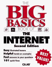 Cover of: The big basics book of the Internet