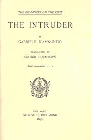 Cover of: The intruder: a novel