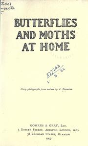 Cover of: Butterflies and moths at home