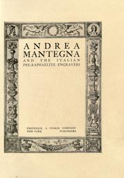 Cover of: Andrea Mantegna and the Italian pre-Raphaelite engravers