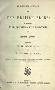Cover of: Illustrations of the British flora