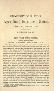 Cover of: The fruit bark beetle