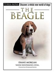 Cover of: The beagle