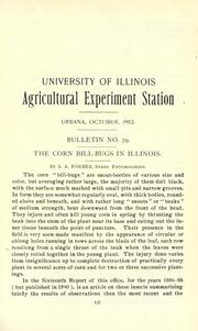 Cover of: The corn bill-bugs in Illinois