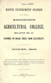 Cover of: Injuries to shade trees from electricity