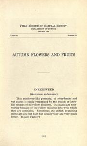 Cover of: Autumn flowers and fruits
