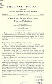 Cover of: A new race of crow