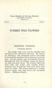 Cover of: Summer wild flowers