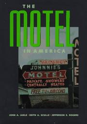 Cover of: The motel in America