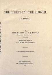 Cover of: The street and the flower: a novel
