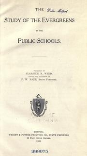 Cover of: The study of the evergreens in the public schools
