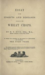 Essay on the insects and diseases injurious to the wheat crops by Hind, Henry Youle