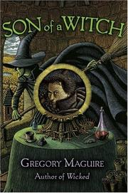 Cover of: Son of a Witch: a novel