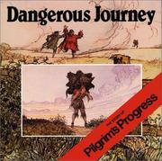 Cover of: Dangerous journey