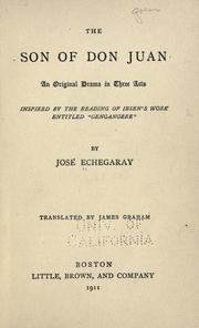 Cover of: The son of Don Juan