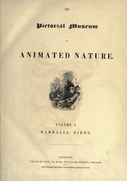 Cover of: The pictorial museum of animated nature ...