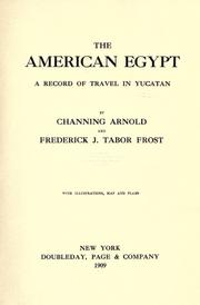 Cover of: The American Egypt | Channing Arnold