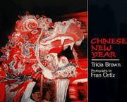 Cover of: Chinese New Year (An Owlet Book)