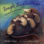 Cover of: Tough Beginnings | Marilyn Singer