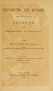 Cover of: Insects at home | John George Wood