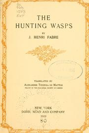 Cover of: The hunting wasps
