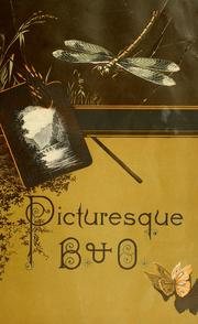 Cover of: Picturesque B. and O. | Joseph Gladding Pangborn