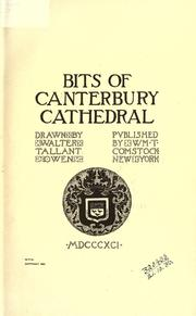 Bits of Canterbury Cathedral by Walter Tallant Owen