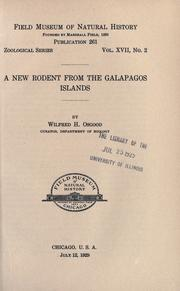Cover of: A new rodent from the Galapagos Islands