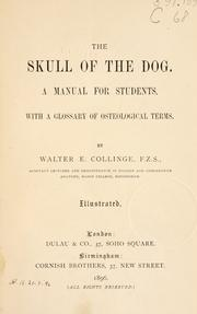 Cover of: The skull of the dog