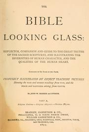 Cover of: The Bible looking glass