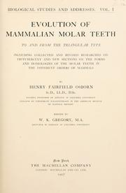 Cover of: Evolution of mammalian molar teeth