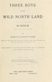 Cover of: Three Boys in the Wild North Land