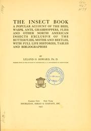 Cover of: The insect book