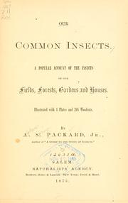 Cover of: Our common insects