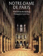 Cover of: Notre-Dame De Paris (Abradale)