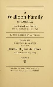 Cover of: A Walloon family in America | Emily Johnston De Forest