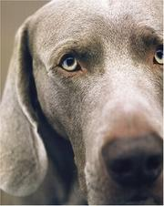 Cover of: William Wegman Polaroids
