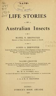 Cover of: Life stories of Australian insects
