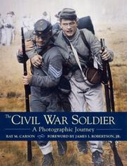Cover of: The Civil War soldier