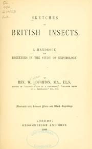 Cover of: Sketches of British insects | William Houghton