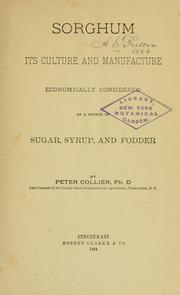 Sorghum by Collier, Peter